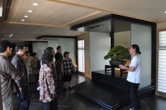 Photo : Omiya Bonsai Art Museum3